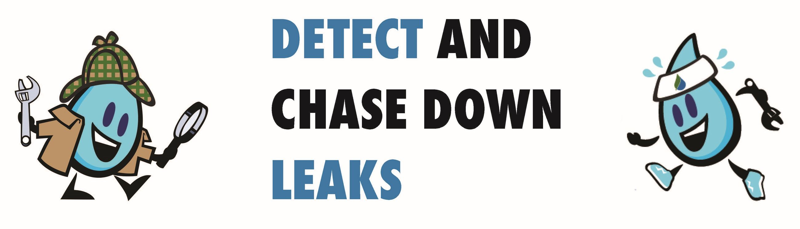 Chase Down Leaks
